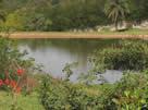 Loteamento Fechado em Mogi-Mirim, Residencial Portal do Lago